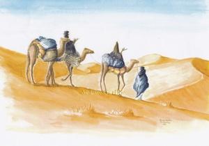 le peuple touareg. modif