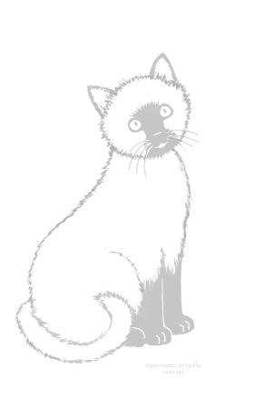 chat Céleste coloriage